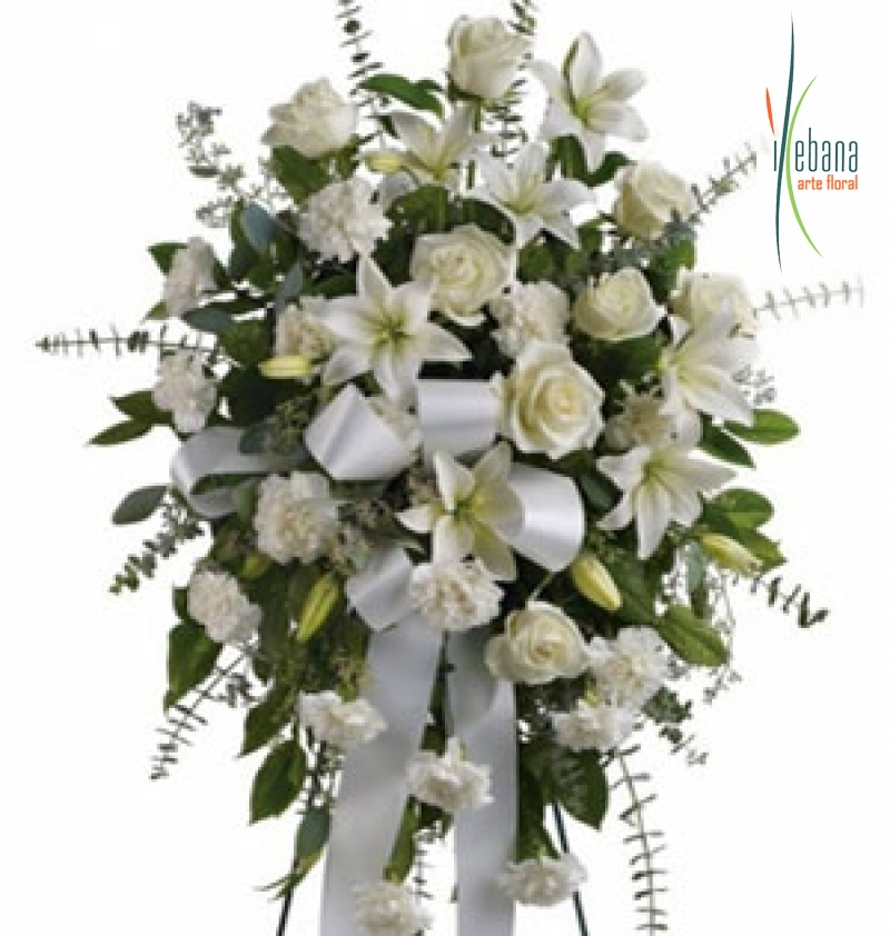 Palma de flor blanca