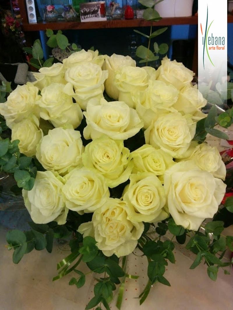 Ramo de 24 rosas blancas funeral
